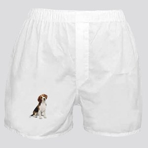 Beagle #1 Boxer Shorts